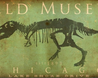 Field Museum Chicago Dinosaur Tyrannosaurus Rex Sue original illustration art on gallery wrapped canvas by stephen fowler