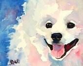 American Eskimo Dog Art Print of Original Watercolor Painting 11x14