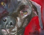 Pitbull Dog Art Signed Print by Ron Krajewski