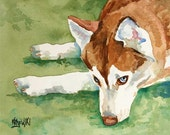 Siberian Husky Art Print of Original Watercolor Painting - 8x10