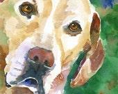 Labrador Retriever Art Print of Original Watercolor Painting - 11x14 Yellow Lab