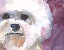 Bichon Frise Art Print of Original Watercolor Painting - 11x14 Dog Art