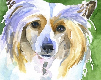 Chinese Crested Art Print of Original Watercolor Painting 11x14