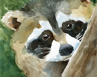 RACCOON Art Print of Original Watercolor Painting 8x10