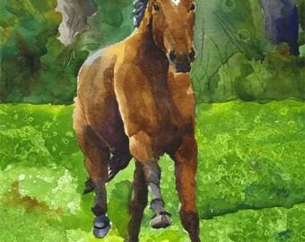 Bay Horse Running Art Print of Original Watercolor Painting 11x14