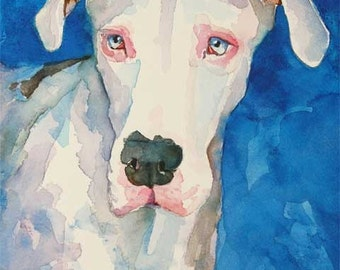 Great Dane Art Print of Original Watercolor Painting - 11x14 Dog Art