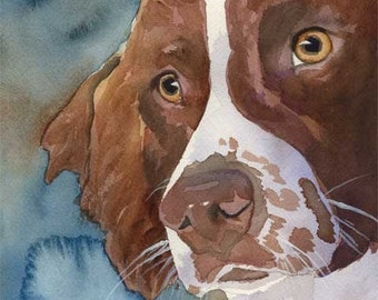 Springer Spaniel Art Print of Original Watercolor Painting 11x14