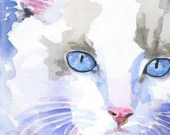 Ragdoll Cat Art Print of Original Watercolor Painting - 8x10