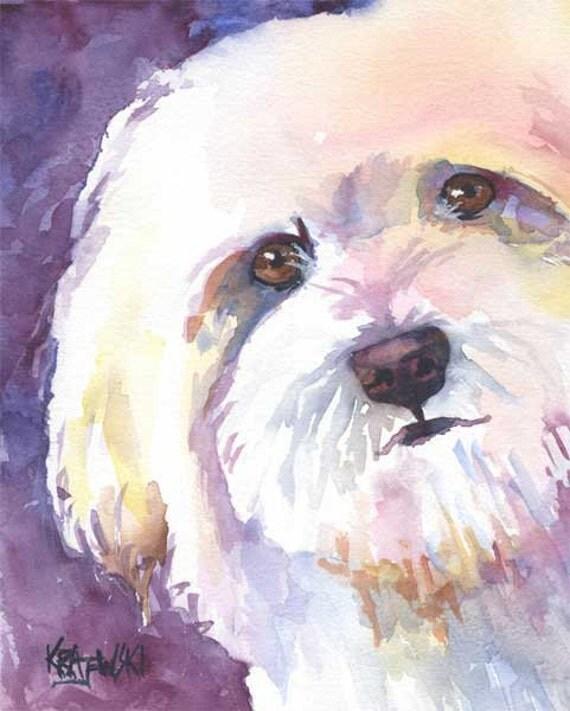 Havanese Art Print of Original Watercolor Painting - Dog Art 8x10