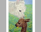 Alpaca Art - 5 Blank Note Cards With White Envelopes - Ranlett
