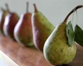 Pears Photocard