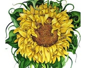 SUNFLOWER, FINE ART PRINT from WATERCOLOR PAINTING, 8 X 10
