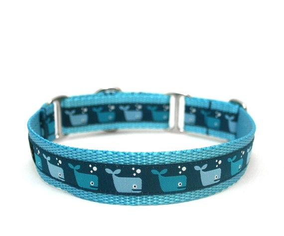 "1"" dog collar A Whales Tale buckle or martingale collar"