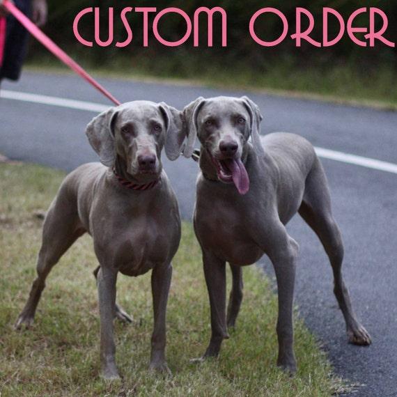 Custom Order for slfergus