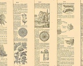 1924 Antique Assortment of -6- French Dictionary Pages For Your Altered Art, Jewelry, Collage and Decoupage