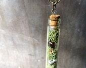 Cork Glass Vial Moss Terrarium Necklace