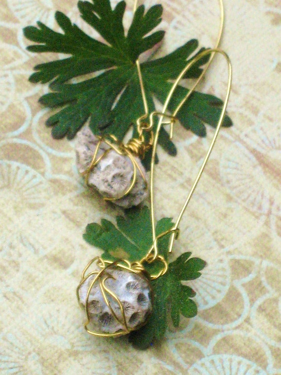 Wire Wrapped Fossilized Coral Dangle Earrings