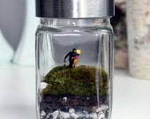 A Couples Kiss Live Moss Terrarium - Includes Simple Care Instructions - 233