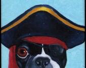 Boston Terrier Pirate Arrr hat cute dog art magnet