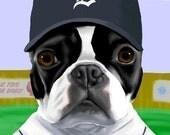 Boston Terrier  Baseball Print - Pick your team