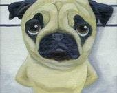 Pug  Line Up Dog Art Magnet