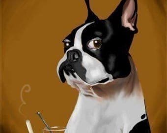 Boston Terrier at the Bar Having a Drink print by B Rubenacker