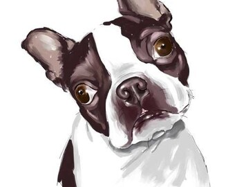 Boston Terrier dog art print