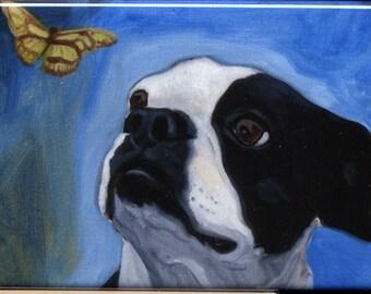 Boston Terrier Butterfly dog art magnet