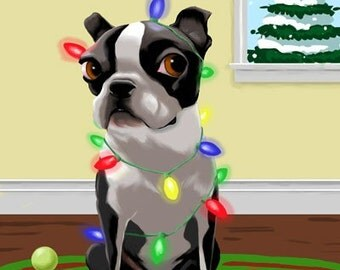 Boston Terrier Tangled in Christmas Lights