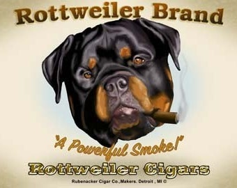 Rottweiler dog art cigar print
