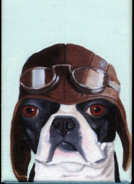 Boston Terrier Pilot  Hat cute dog art magnet