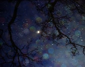 In the fields of stars - magical dreamy  night sky photograph in navy blue - InmostLight