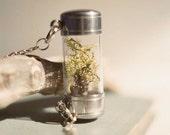 Lichen specimen shadowbox necklace.