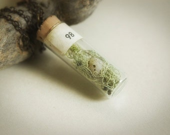 Bird nest  - antique glass vial curiosity terrarium necklace with moss nest and speckled bird egg