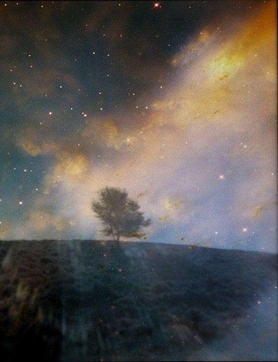 HALF PRICE SALE - Twilight. Original 5x7 fine art photographic print of a tree silhouette over starry sky