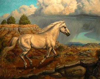 WILD HORSE original equine art oil 12x16 painting by Kerry Nelson