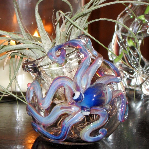 Amber Purple Octopus and  Round Sitting Hand Blown Glass Vessel for Air Plants or a Small Terrarium