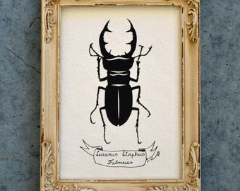 Sale 20% Off // GIANT STAG BEETLE Papercut - Hand-Cut Silhouette, Framed // Coupon Code SALE20