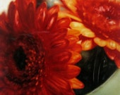 Orange Gerbera - Signed Fine Art Photograph (Small - 5x5 inch)