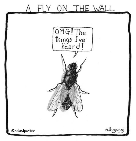 Fly on the Wall PRINT