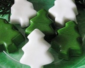 Forest Tree GUEST Soaps FRANKINSENSE and Myrrh-Set of 6--Choose Scent
