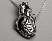 Anatomical Heart Locket- 24 inch chain