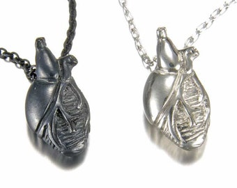 Small Solid Silver Anatomical Heart Necklace
