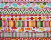 Girl Urban Zoologie and Remix Fabric by Ann Kelle for Robert Kaufman- Fat Quarter  Bundle- 8 total