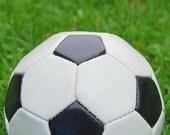Soccer Ball Note Card
