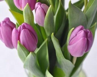 Tulips Purple - The Bridgitte Card