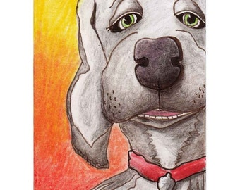 Aceo Print Weimaraner Talking Hound Dog Caricature by RSalcedo A4C NORGASWAP5