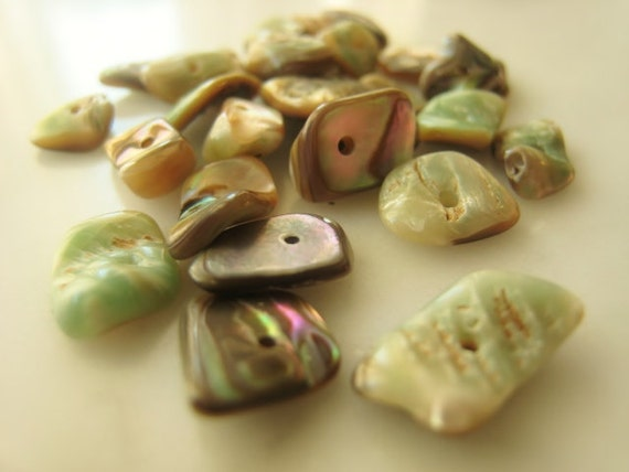 6-13mm Abalone Chips Parcel of Twenty-Eight Item No. 6100