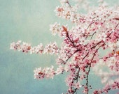 Pink Flowering Tree Photograph - dreamy pastel wall art, baby nursery print, home decor photo - - MaleahTorney