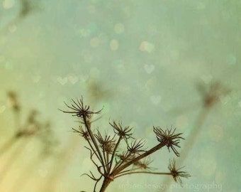 Nature Photography, Queen Anne's Lace, nursery wall art, enchanted, fairytale, mint green, yellow, print